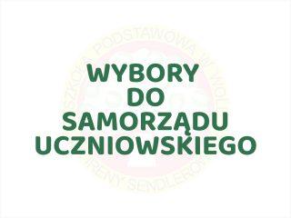 Wybory do Samorządu Uczniowskiego 2021/22 - miniatura